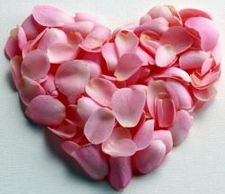 O meu coração é o teu jardim!