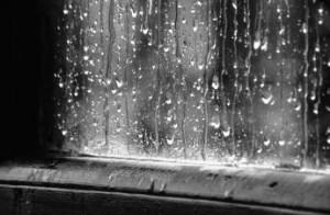 Dias de chuva # 02