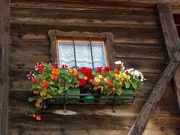 Open in new window