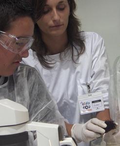 Ciência ao Vivo e a Cores